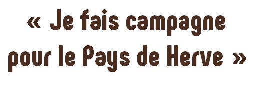 image wiki__je_fais_campagne.jpg (0.2MB)