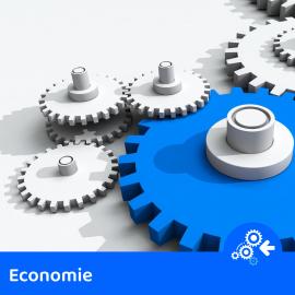 dd Lien vers: EconomieE202008
