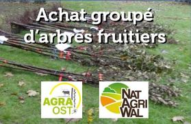achatgroupedarbresfruitiers_achat-agra-ost.jpg