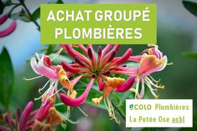 achatgroupediversifiefruitiershaiesetc_achat-groupe-ecolo-plombieres.jpg