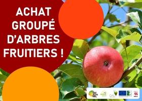 achatgroupefruitiershautestiges2_achat-groupe-fruitiers-vierge.jpg