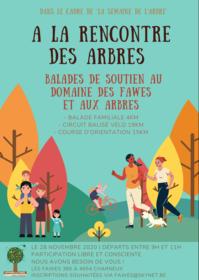 alarencontredesarbres_domaine-des-fawes-2020-11-28.png