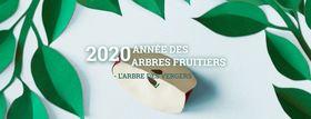 distributiondarbresetarbustesasoumagne_rw2020-annee-des-arbres-fruitiers.jpg