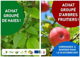distributiondesachatsgroupesarbresfruiti_achat-groupe-haies-et-fruitiers.jpg