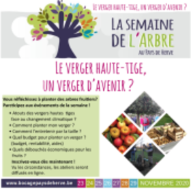 latailleannuelleuneoperationimportantepo_image843.png