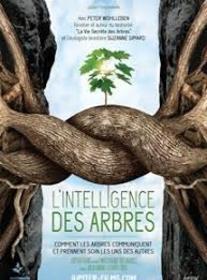 projectiondufilmlintelligencedesarbres_intelligence-des-arbres.jpg