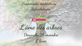 promenadebaindeforetlamedesarbres_l-ame-des-arbres-1-.png