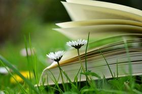 toutelasemainealabibliothequedeplombiere_book-2304388_960_720.jpg