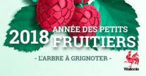 image semarbreRW2018.jpg (13.2kB) Lien vers: http://environnement.wallonie.be/semaine-arbre/