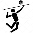 matchdevolleyball_volley.png